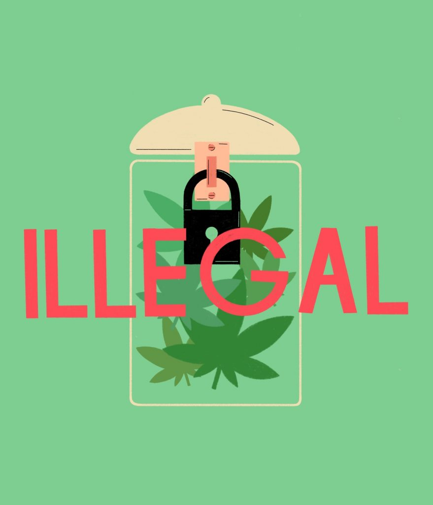 Cannabis Illegality in the USA
